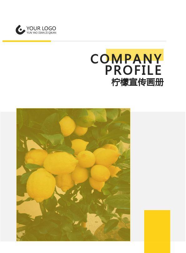 创意柠檬餐饮美食企业品牌宣传画册