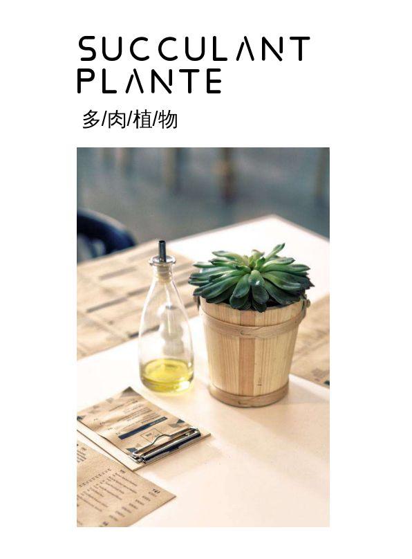小清新多肉植物展示电子相册