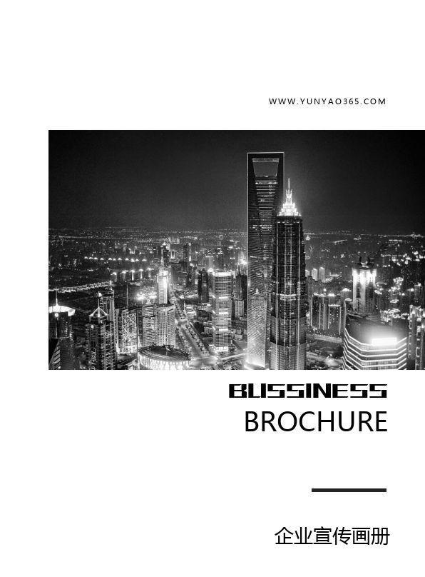 时尚黑白精美行业通用企业宣传册