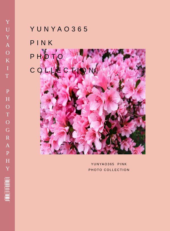 清新风粉色个性摄影电子相册